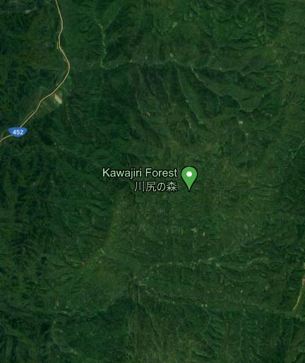 Kawajiri%20Forest.png