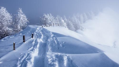WinterFence